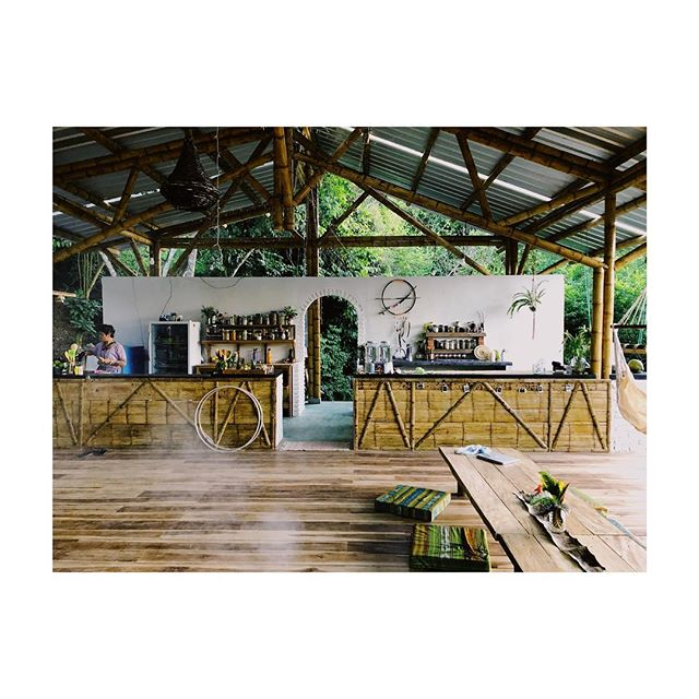 ~our kitchen for the next 9 nine days~  #wildchildvillage #ecuador #decor #lovethisspace #takingtimeaway #selfcare #selflove #remedies #remediesapothecary