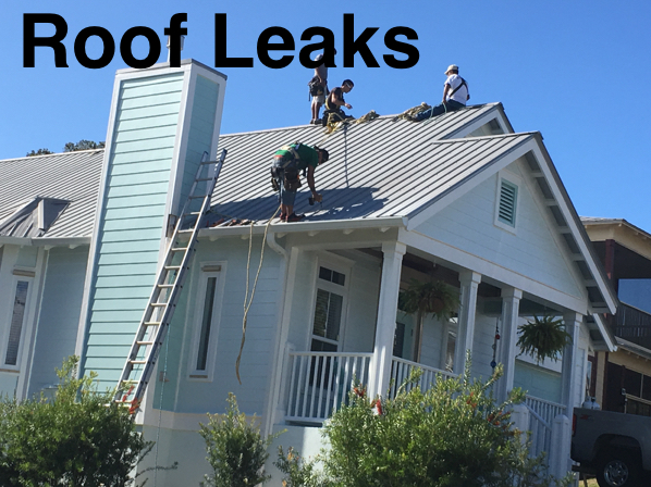 Infrared-Roof-Leak-Detection.jpg