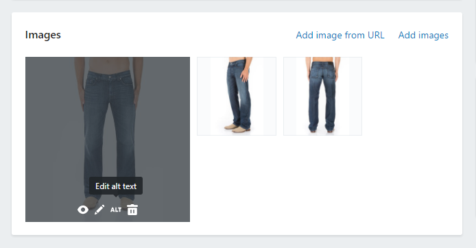 Hover over your product image and click on the 'ALT' to edit your Alt text.
