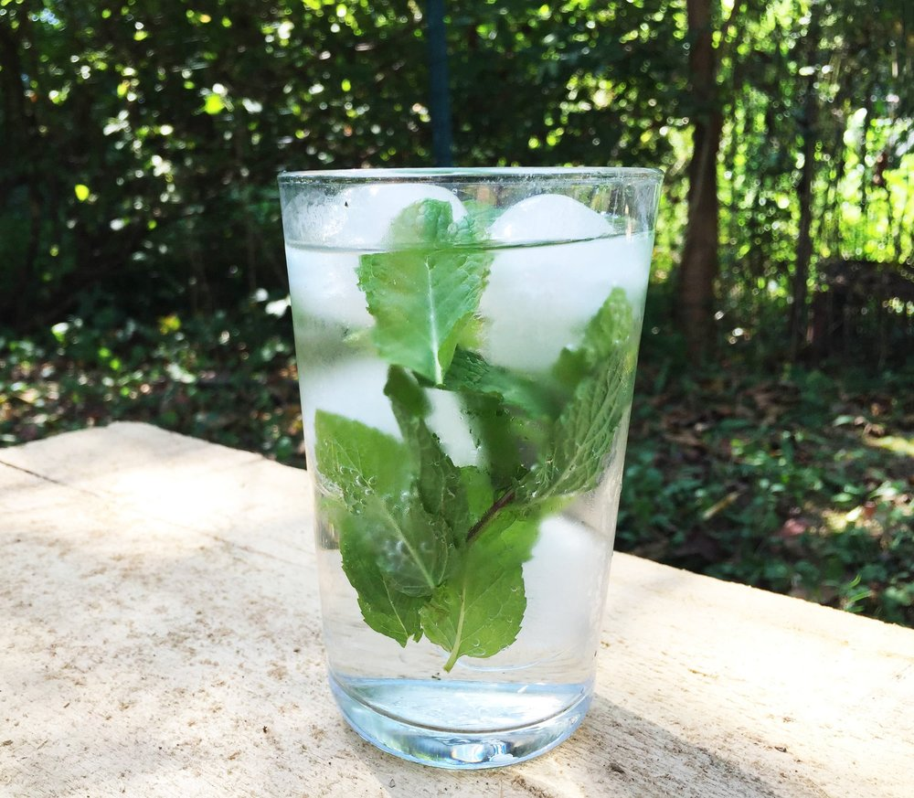 "NOT FOND OF ""PLAIN"" WATER?  ADD SOME LEMON SLICES, CUCUMBER SLICES, BERRIES OR MINT LEAVES FOR SOME FLAVOR.  AND REMEMBER TO USE YOUR BPA FREE WATER BOTTLE."