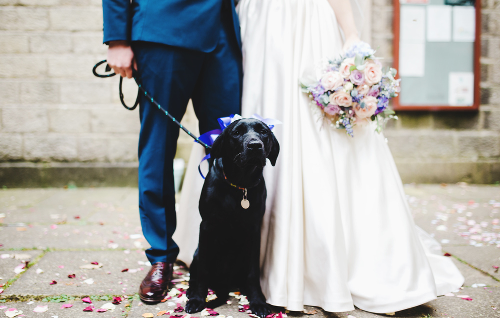 Bride, Groom and their dog. Lancashire wedding photographer