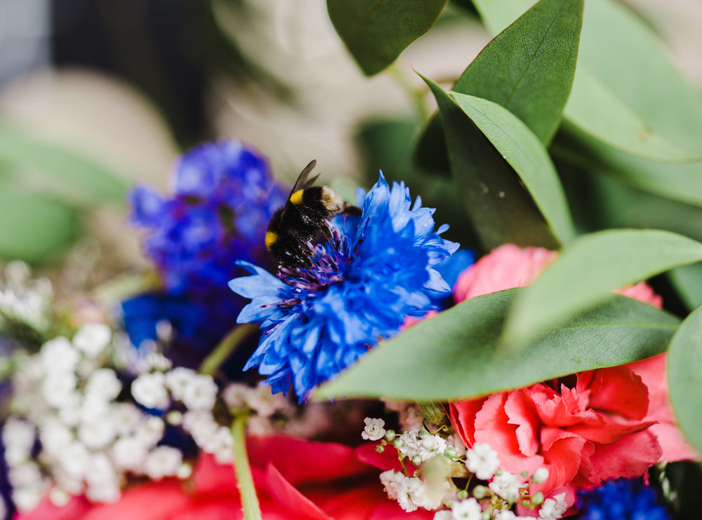 A bee on the bride bouquet- Creative wedding photography
