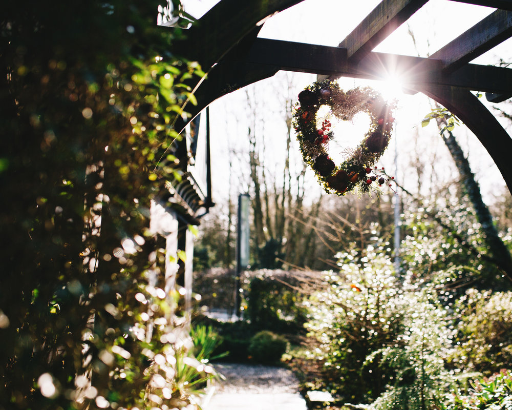 winter sun streaming through the trees - winter wedding specialist