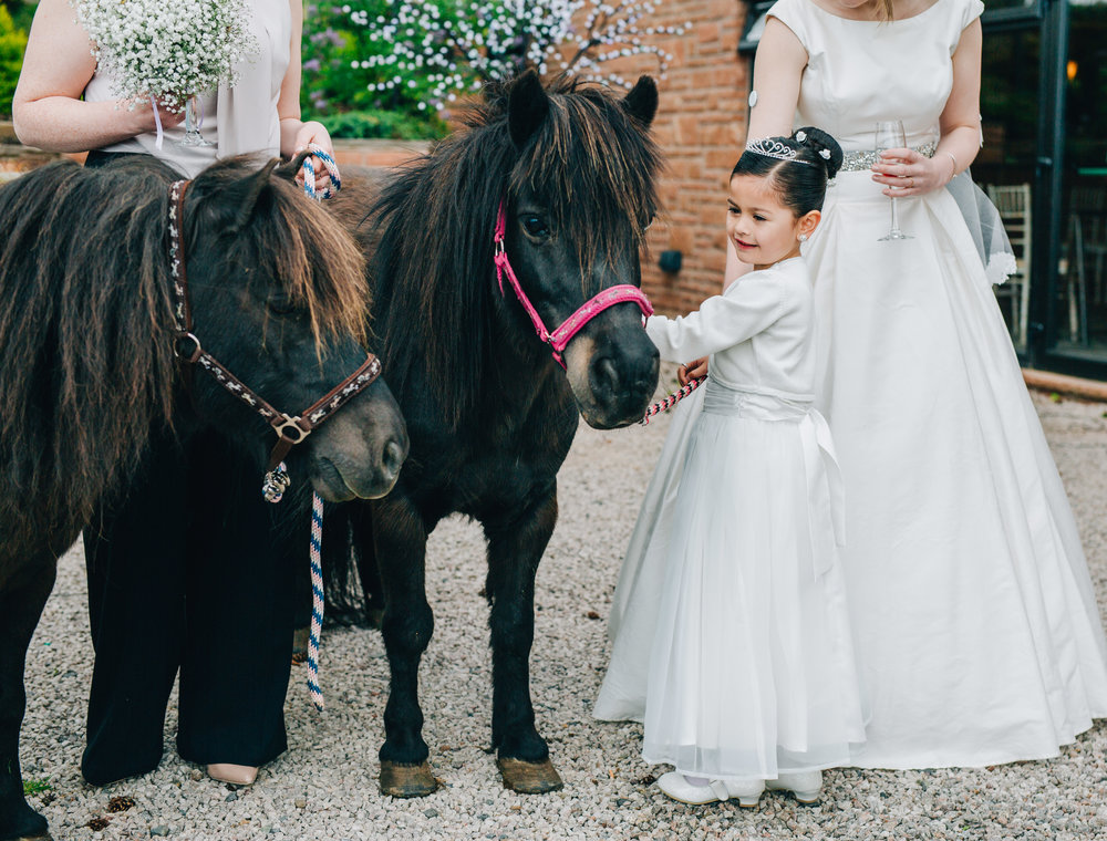 Ponies at a wedding in the Lake district,  pastel themed wedding.