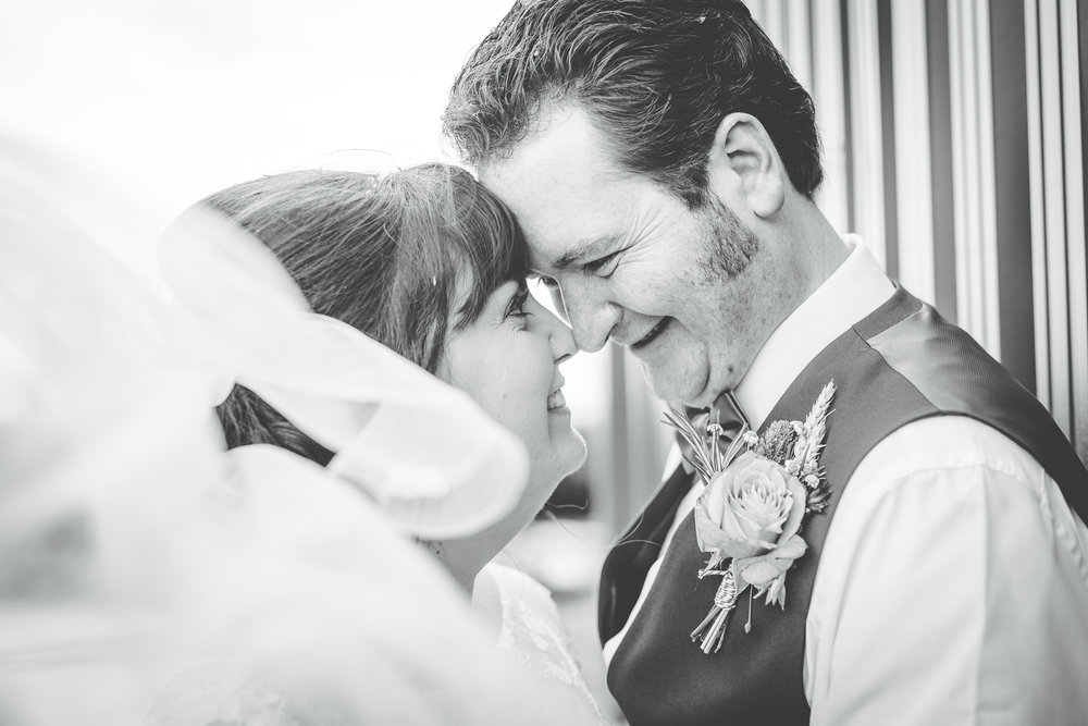 Bride and groom at Wellbeing Farm, quirky wedding photography.