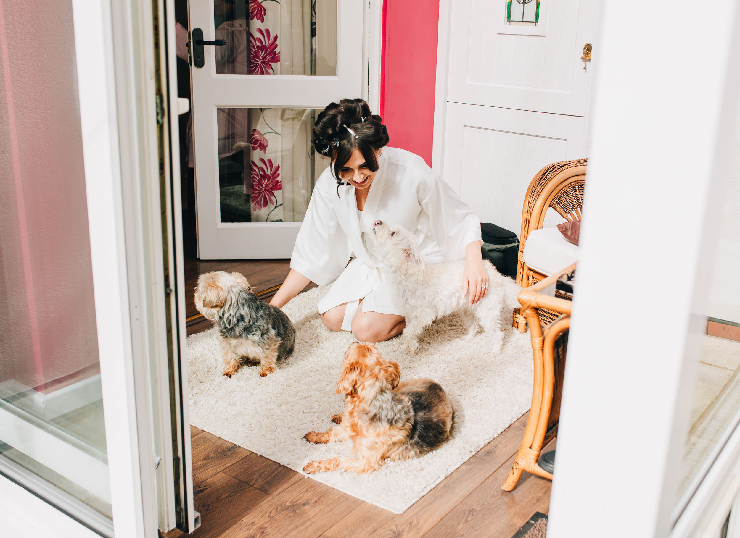 bride with her dogs - cheshire wedding