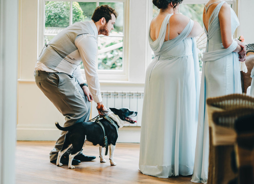 The family dog waiting the wings during the ceremony. Creative wedding photography.