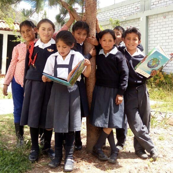 TINI (Tierra de niños y niñas) RINCÓN DE VIDA. PEP: Paquita Casaleiz – Educadora  GRADO: 3ro y 4to de primaria REGIÓN: Ancash Busca restaurar y generar conciencia sobre las áreas verdes en el colegio Nº 86386 de Pacash.