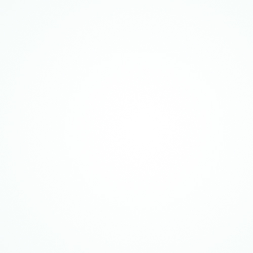 fondo-blanco-5.jpg