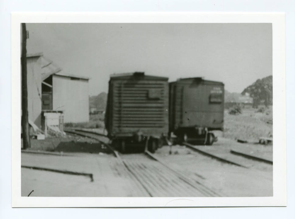 Derailed box cars on Pine Avenue in Warren. Courtesy of Ohio Memory Connection.
