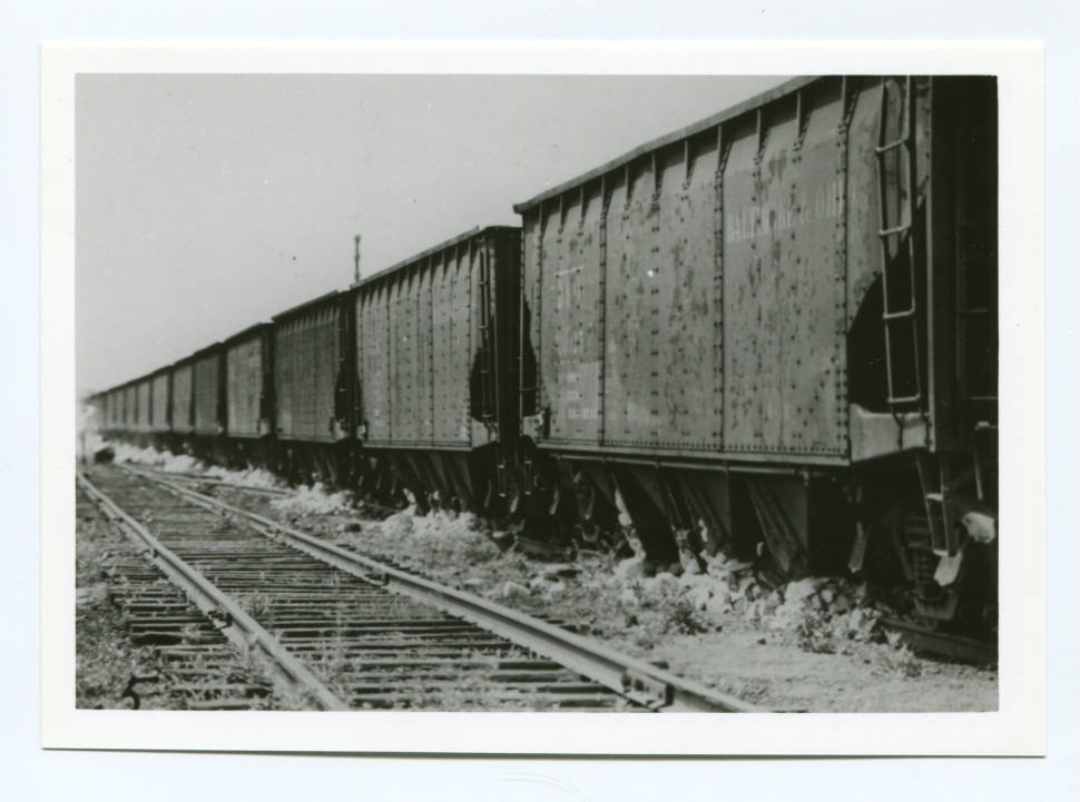 Pennsylvania Rail Road cars with hoppers opened up. Looks like they were hauling in limestone for the Blast Fce. Courtesy of Ohio Memory Connection.