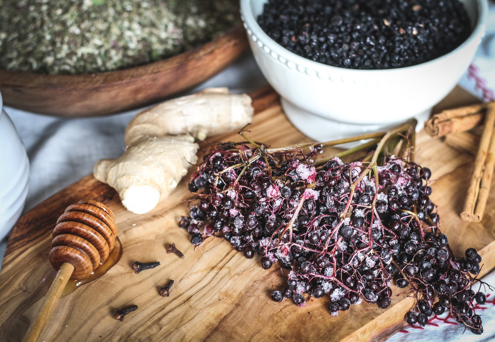 elderberries 2018.jpg