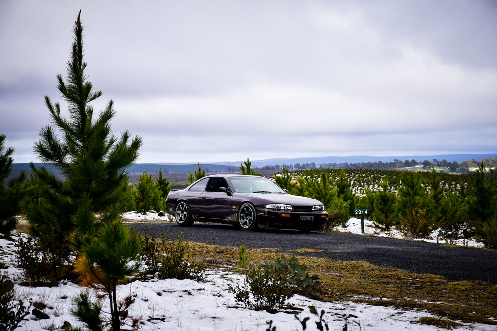 snow-11.jpg