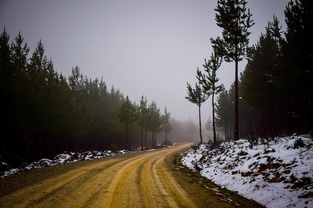 snow-68.jpg