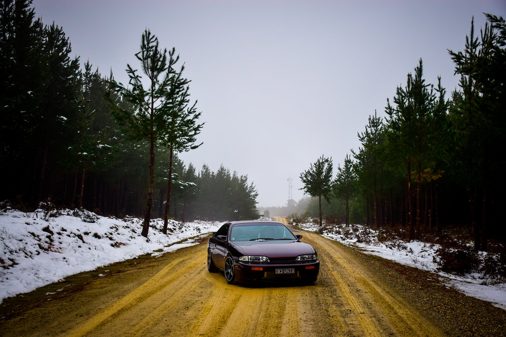 snow-67.jpg