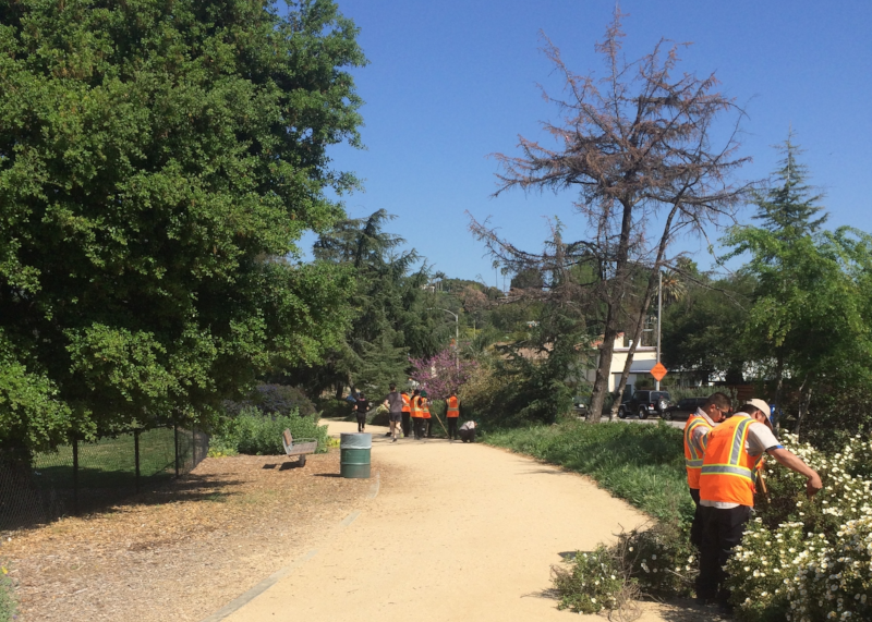 Pedestrian Path Maintenance