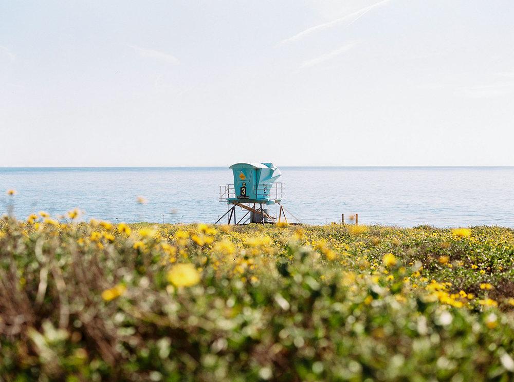 Field_Trip_2015_California_ElCapitanCanyon_JeanLaurentGaudy_002.jpg