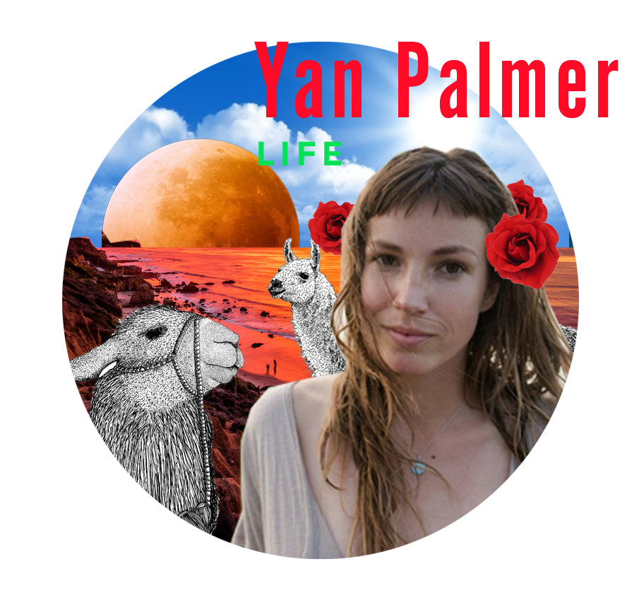 """YAN PALMER LIFE CHANGE + ART """"We're all going to die anyway"""" and other mind games to make you the most successful in your field at LOVING what you do. Have you always suspected that power = illusion and imperfection = beauty? Learn to live love by holding such paradoxes. Learn to improve your """"results,"""" exponentially by letting go of them for good. This presentation is rated pg-13 and may involve awkward cussing and the mention of how all human beings are created, by which we mean sssssex. yanpalmer.com"""