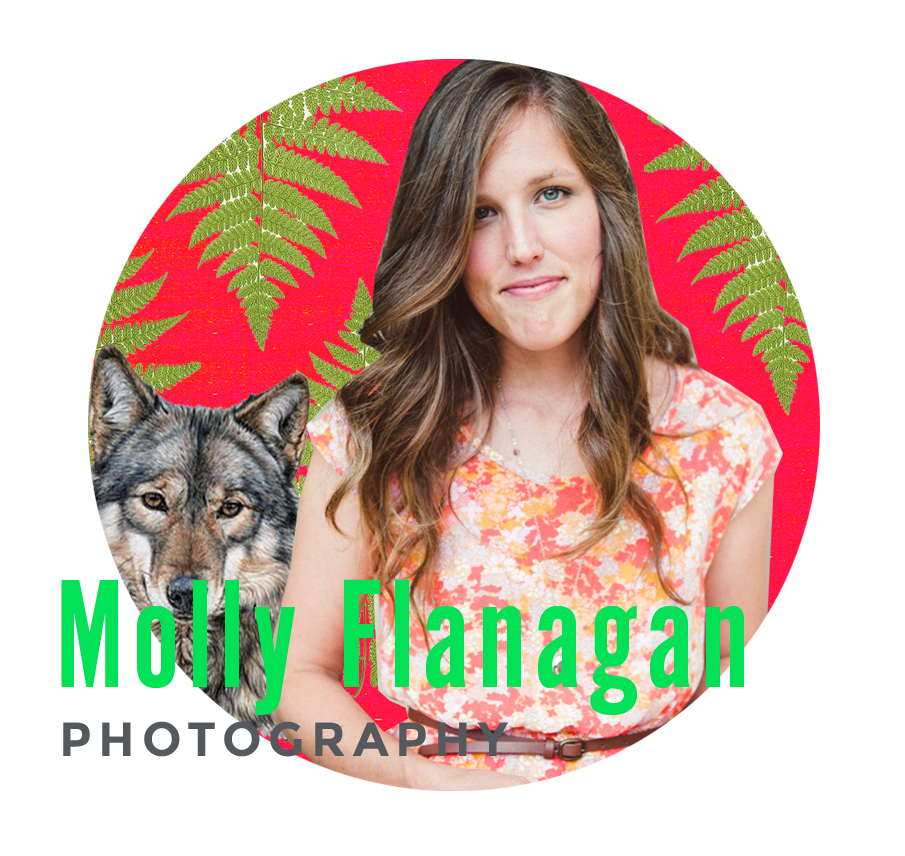 MOLLY FLANAGAN DON'T BE A PHOTOGRAPHER Loving photography isn't enough to sustain you. Use your passions to re-invent your work and take yourself in new directions.  mollyflanagan.com