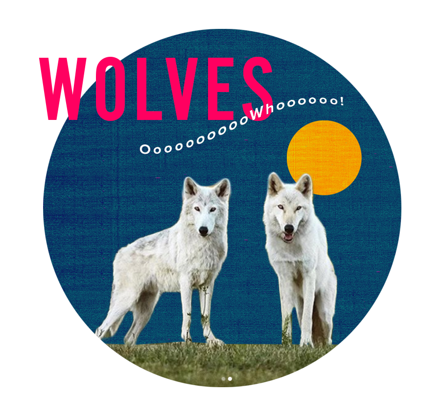 2018_wolves.png