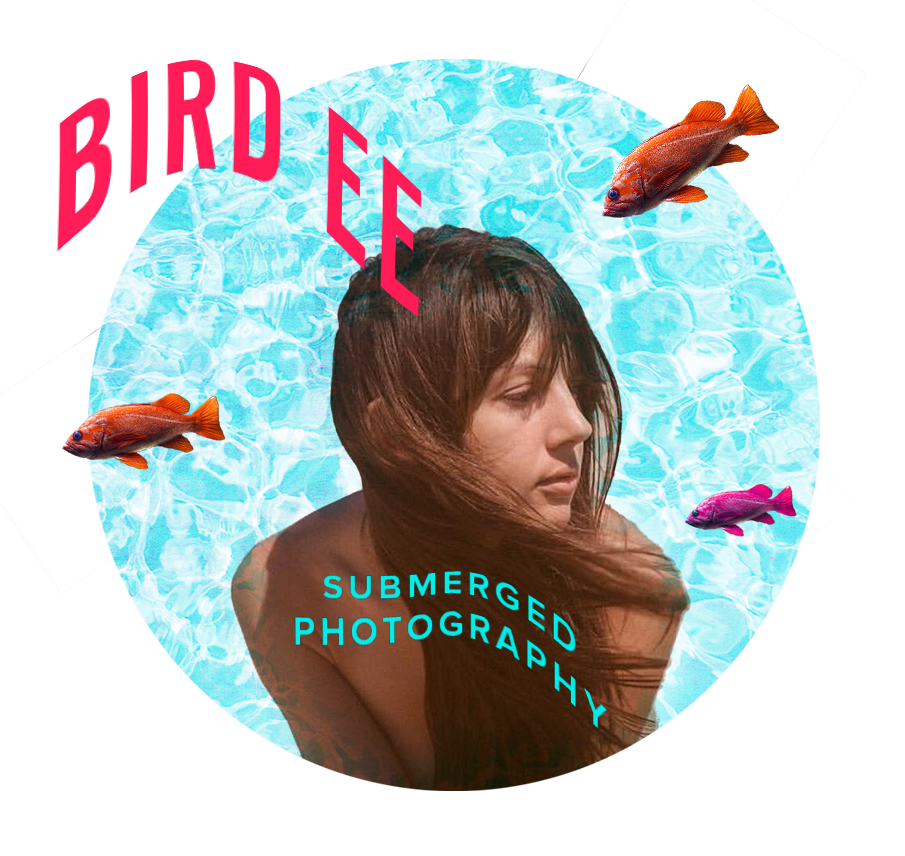 BIRD EE Bird.ee claims the power of her own form. Her underwater nude self-portraiture suspends her in time, weightless. Through her unique medium, she creates new life in her own image. There's a lot to be said about Birdee, but it's hard to understand because we're all submerged. www.bird.ee
