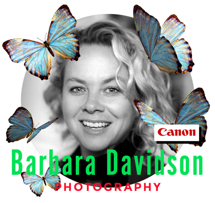 2019-barbara+davidson_Teacher-CloseCropped-insidecircle.png