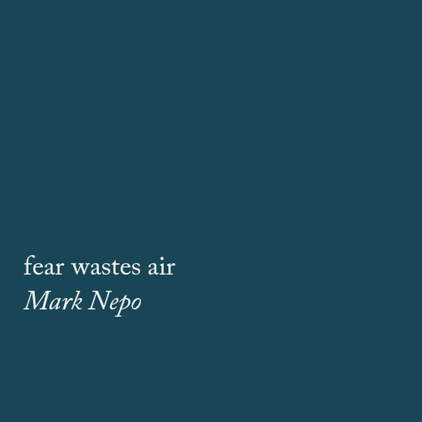 || fear wastes air ||⠀⠀⠀⠀⠀⠀⠀⠀⠀ This is the final line from a poem called Freefall by Mark Nepo. ⠀⠀⠀⠀⠀⠀⠀⠀⠀ He read it on a recent podcast (Super Soul Conversations) and it really stuck. I think because it captures the essence and redundancy of fear/worry/anxiety perfectly. ⠀⠀⠀⠀⠀⠀⠀⠀⠀ ⠀⠀⠀⠀⠀⠀⠀⠀⠀ It's a reminder that by being stuck in our head, we are wasting the present moment. Whether or not our fears become validated down the track is irrelevant. The present is the only thing that is really guaranteed so it makes sense to really enjoy every moment of it! ⠀⠀⠀⠀⠀⠀⠀⠀⠀ ⠀⠀⠀⠀⠀⠀⠀⠀⠀ Lately, I've been using this as a little mantra of sorts. If I notice I'm stuck in my head, I take a big breath and silently note these three words - fear wastes air. ⠀⠀⠀⠀⠀⠀⠀⠀⠀ ⠀⠀⠀⠀⠀⠀⠀⠀⠀ It works as this awesome reality check to snap me out of worry or anxiety and put me back into the present moment. Thought I'd share in case it resonates or helps anyone else 😉 😘⠀⠀⠀⠀⠀⠀⠀⠀⠀ ⠀⠀⠀⠀⠀⠀⠀⠀⠀ BTW - he's the author of that book I'm forever recommending - The Book of Awakening. 👌🏼It's a goodie if you're looking for a daily reading ritual in 2019. ⠀⠀⠀⠀⠀⠀⠀⠀⠀ ⠀⠀⠀⠀⠀⠀⠀⠀⠀ #marknepo #freefall #mindfulness #meditation #mindfulnesstechniques