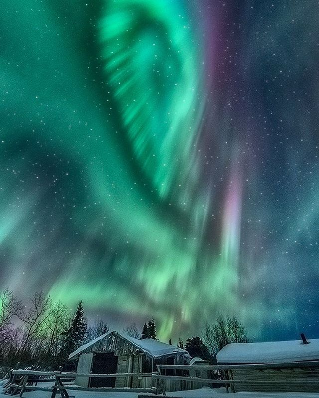 When the sky lights up #beautiful #photoftheday #jonathantucker #landscape #photography #photographer #canada #sky #stars #auroras #northernlights #fullmoon #nikon #nightscape #cabin #cold #nofilter #winter