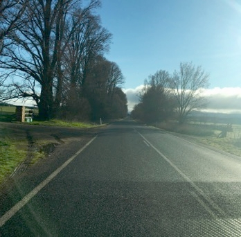 Day 4 travels the Monaro Highway and then the back road to Bungendore