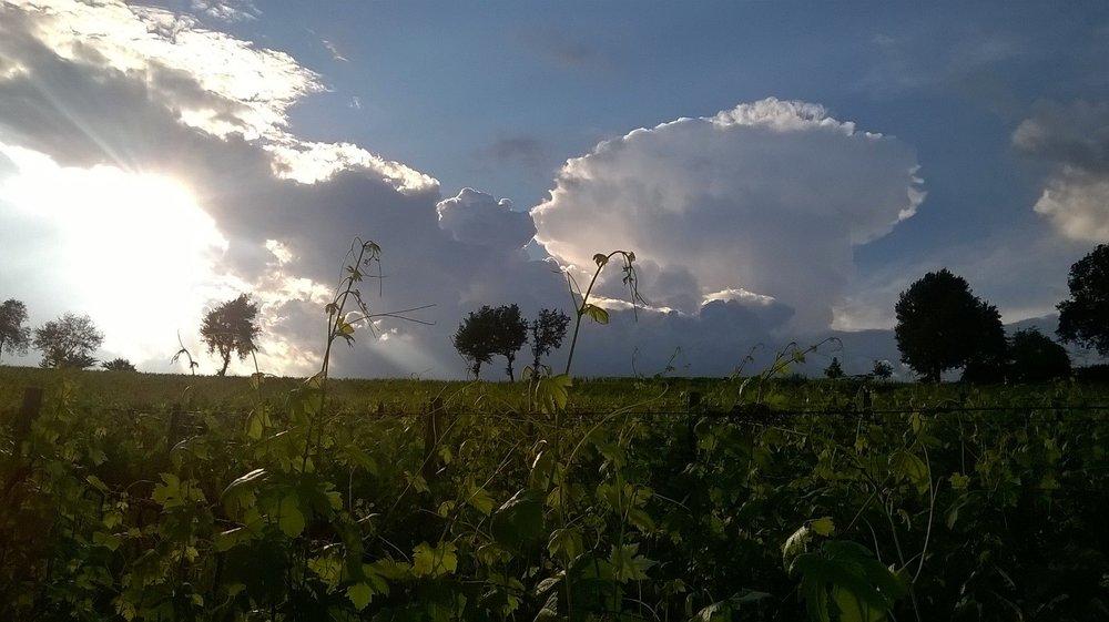 Estate e nuvole #8.jpg