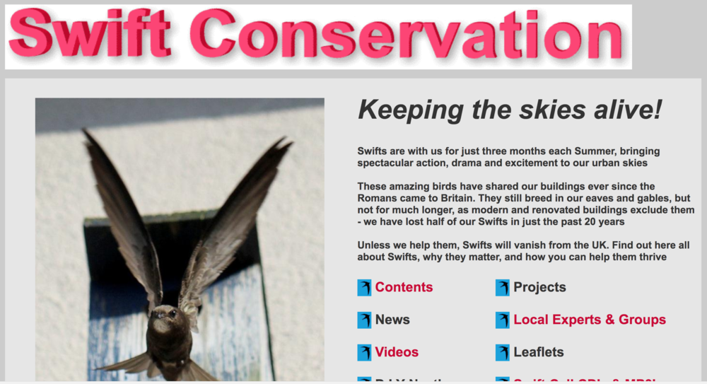 Swift Conservation Organisation