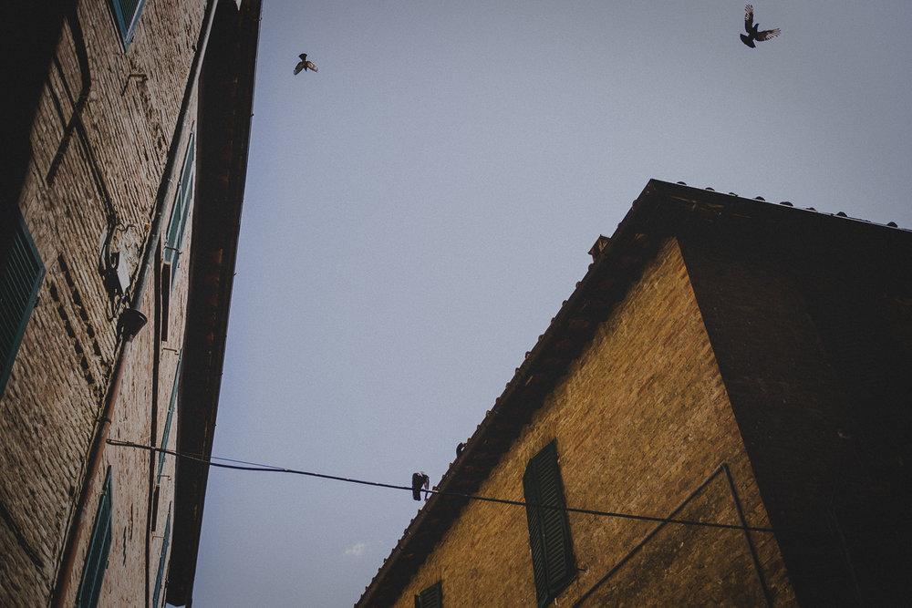 WAD-Italie-1210.jpg