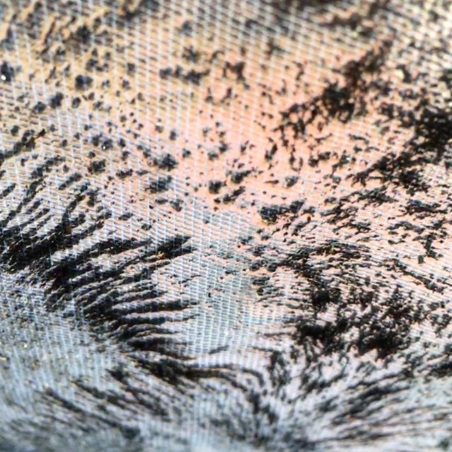 Sun-kissed iron filing experiments on tulle. #magnet #magnetic #magnetism #magneticdrawing #drawing #kunst #experiment #iron #ironfilings #textiles