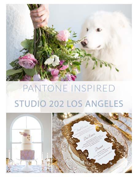 Pantone Shoot.jpg