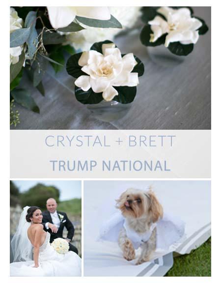 portfolio_cover Crystal and Brett.jpg