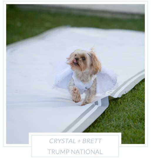 Crystal + Brett.jpg