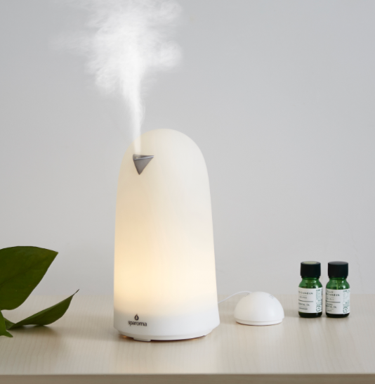 AnyPro Essential Oil Diffuser - whatthegirlssay.com