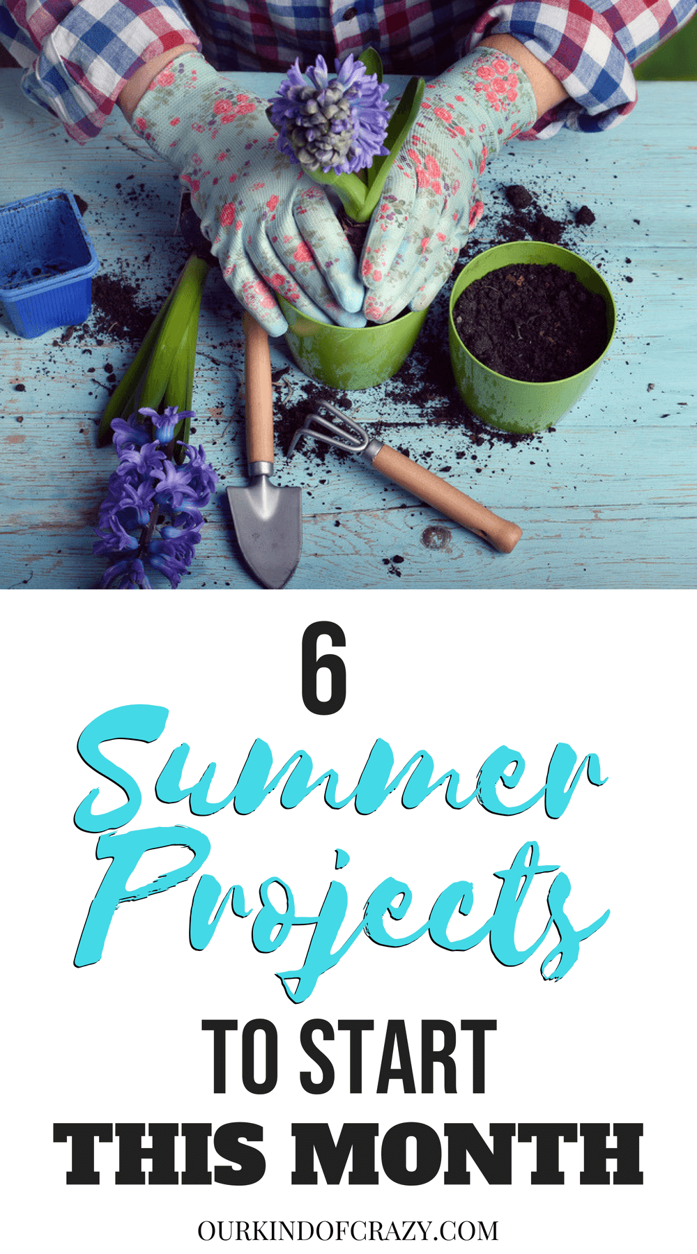 Summer Project Ideas.  Ready to get some projects this summer? Here are some great ideas to get you going.
