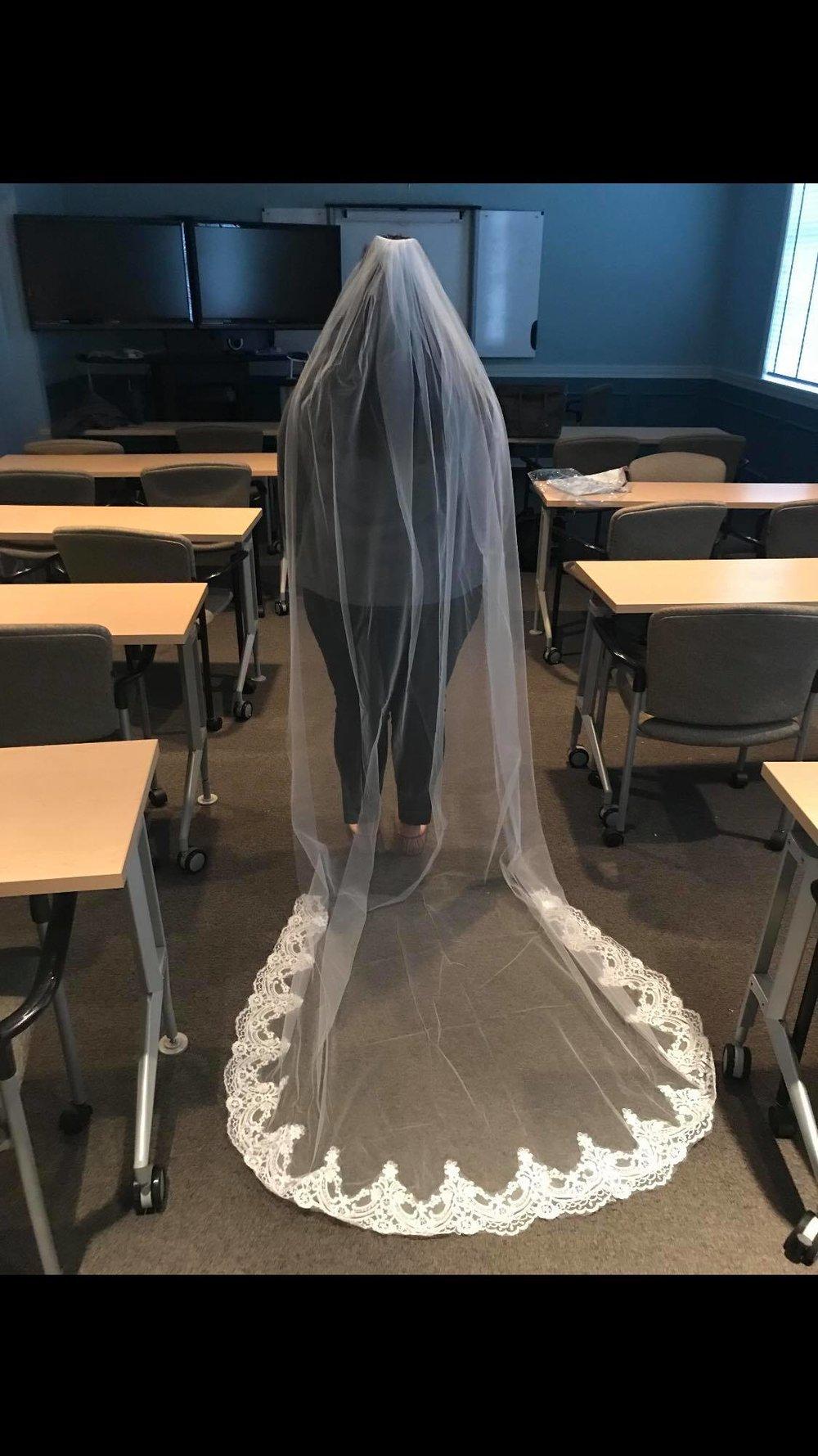 Cathedral Length Wedding Bridal Veil