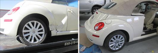 623320-tb-beetle.jpg