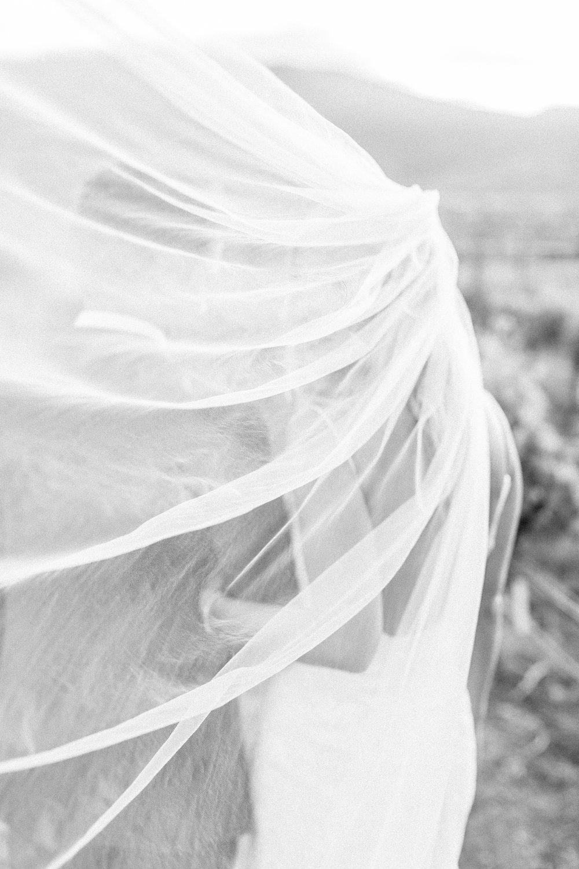 Kelowna Wedding Planner Spirit Ridge Just Married Bride Groom.jpg