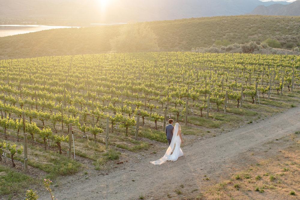 Okanagan Osoyoos Vernon Kelowna Penticton Winery Sunset Wedding Bride Groom Just Married Planner.jpg