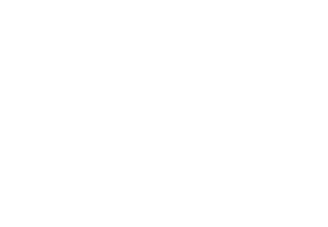 efee84c365945b Sue Damen Equestrian Development — Riding lessons Hamilton ...