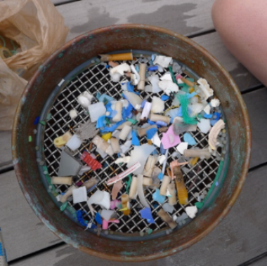 Plastic debris Captured from the ocean