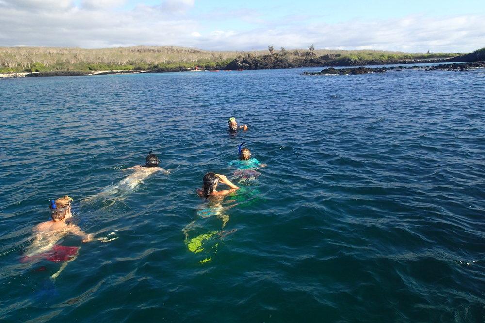 Galapagos Floreana Tropic Snorkel P5270581.JPG