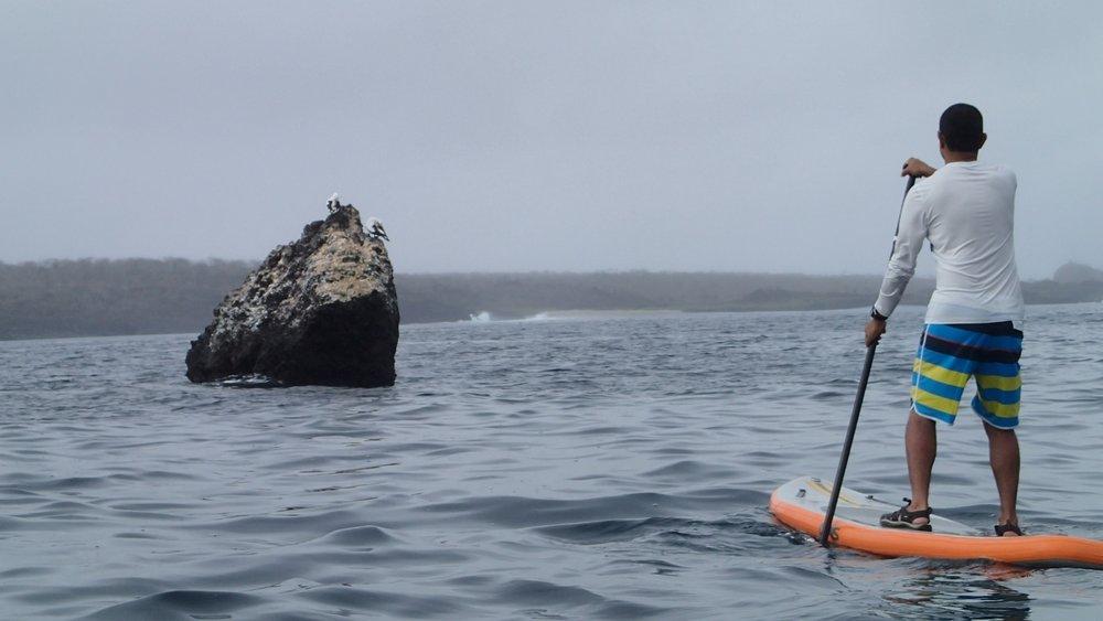 Galapagos Floreana Tropic SUP Paddleboard P9130014.jpg