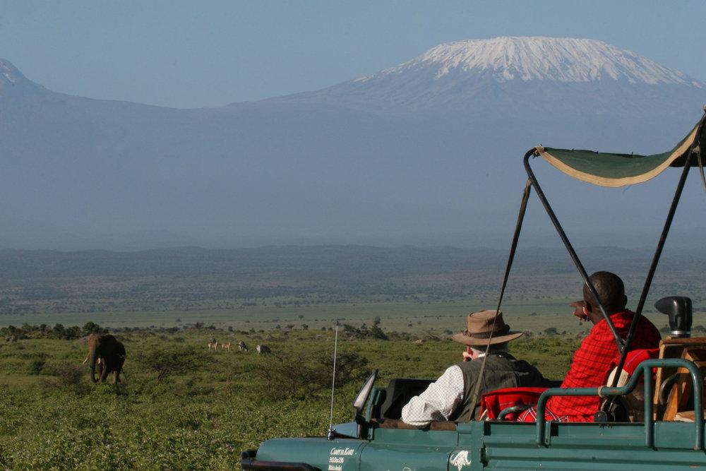 Game drive Kilimanjaro elephant