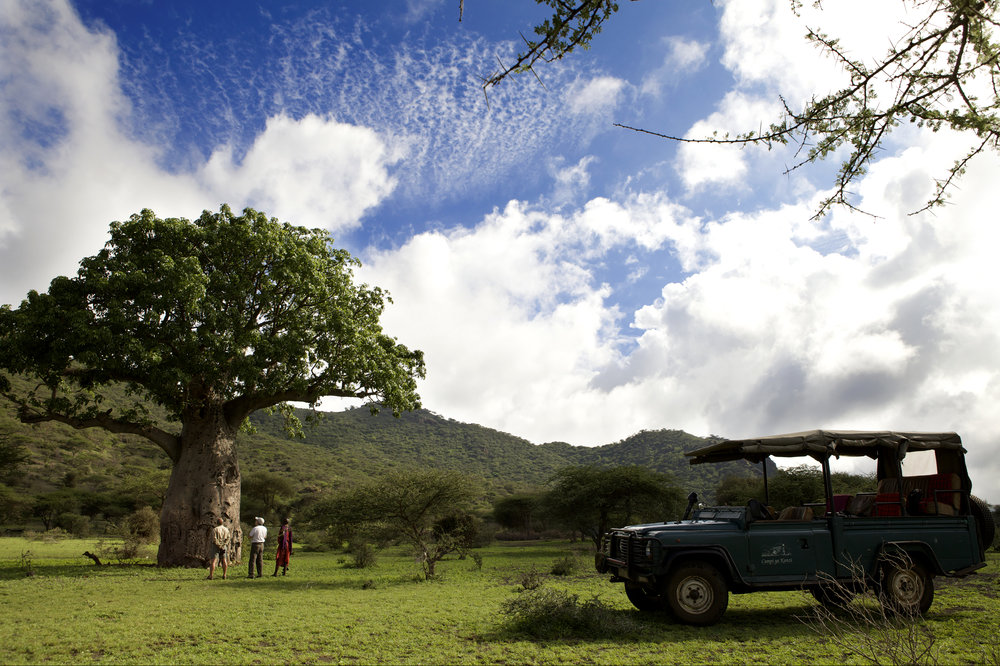 Game drive baobab tree viewing