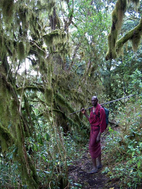 Cloud forest walk with Matasha