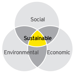 The Triple Bottom Line. Credit:  Ey.com